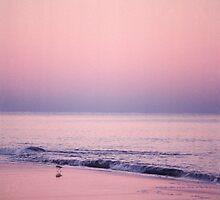 Wading Bird by Jay Gross
