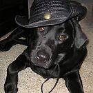 """LIKE MY NEW HAT""? by tawaslake"