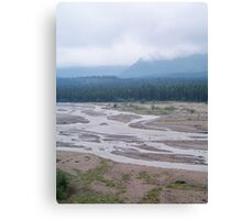 Pure Wilderness Canvas Print
