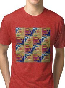 Tranquil 6 Tri-blend T-Shirt