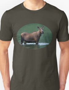 Moose & Emerald Pool T-Shirt