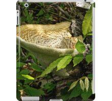 Dryads Saddle Bracket Fungi - Polyporus Squamosus iPad Case/Skin