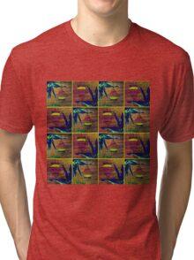 Tranquil 8 Tri-blend T-Shirt
