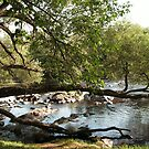 ADIRONDACK MOUNTAIN RIVERS AND CREEKS by linmarie