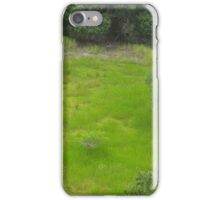 Lush green grasslands of the south iPhone Case/Skin