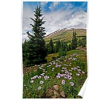 Colorado Backcountry Poster
