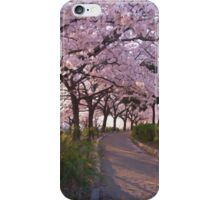 HC0169 iPhone Case/Skin
