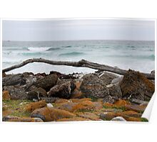 Rocky shore Poster