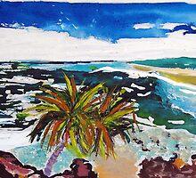 Noosa Outlook  by gillsart