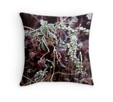 022107-45 FROST      Throw Pillow