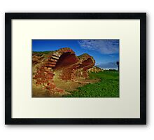 """""""Remnants of The Tanning Tradition"""" Framed Print"""