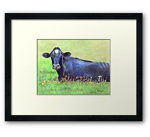 Blue Cow In A Green Pasture Framed Print