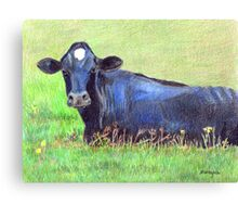 Blue Cow In A Green Pasture Canvas Print