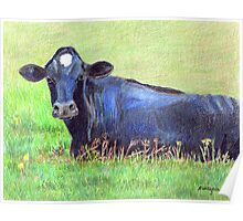 Blue Cow In A Green Pasture Poster