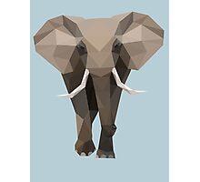 low poly elephant Photographic Print