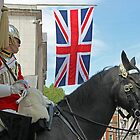 VE day 70 Years On - The Household Cavalry - Horse Guards - London by Colin  Williams Photography