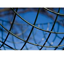 Wire Basket Photographic Print