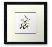 Vintage cute bright yellow and black birds Framed Print