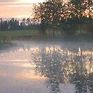 Early morning in Estonia by loiteke