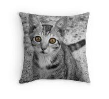 A cute Yellow Eyed Kitten Print Throw Pillow