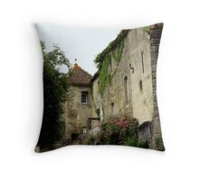 Delightfully Dilapidated! Throw Pillow