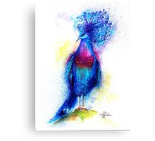"""Blue Crowned Pigeon"" Canvas Print"