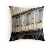 Medieval Beauty Throw Pillow