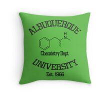 Albuquerque University - Breaking Bad Throw Pillow