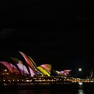Vivid Show Sydney by emma jane murphy