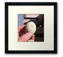 deathstar egg Framed Print