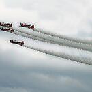EAA Air Show 2009 by Moninne Hardie