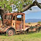 Rusty Old Ute by Pauline Tims