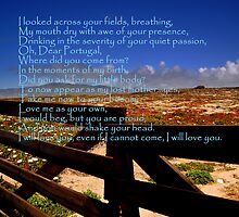 Portugal....Love of a Land by Wayne Cook