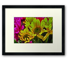 Spring daisies 6 Framed Print