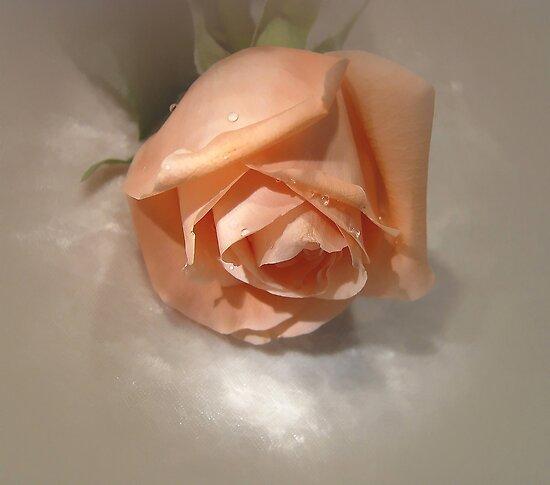 My Love Forever by Ree  Reid