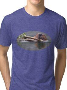 Beaver & Reflection Tri-blend T-Shirt