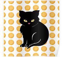 Little Black Cat Poster