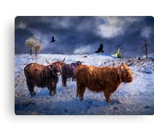 Highland Lassies Canvas Print