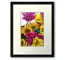 Spring daisies 7 Framed Print