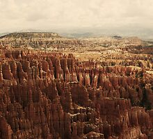 Bryce Canyon, Utah. 2 by Finbarr Reilly