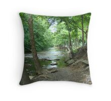 Invitation To Wade Throw Pillow