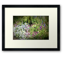 Spring garden in Pink and Blue Framed Print