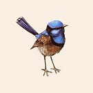 Proud Little Wren, Russet, Blue and Creme by ThistleandFox