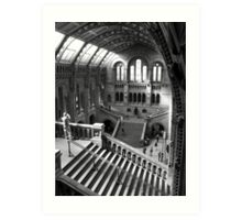 Inside the Natural History Museum, London Art Print