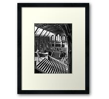 Inside the Natural History Museum, London Framed Print
