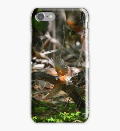 Turdus Migratorius - American Robins In Dispute | Center Moriches, New York  iPhone Case/Skin