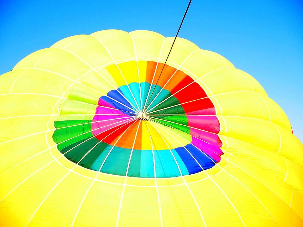 Color Wheel by Lynn Moore
