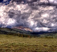 Across a Yellowstone Meadow by Terence Russell