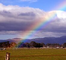 At rainbows end on the Featherston Straight by Cathryn Swanson