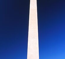 'Washington' by Gavin J Hawley